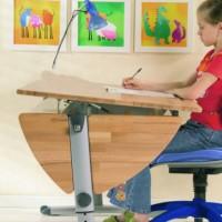 Грамотная организация рабочего места школьника всегда играет очень важную роль. Недостаточно просто купить стол, стул и установить их, нет. Нужно учитывать целый ряд аспектов, чтобы ребенок мог избежать в будущем...